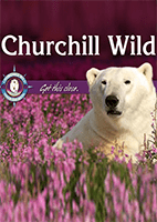 Cover-CW-Brochure