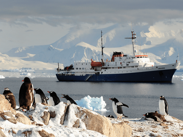 Antarctica Adventure Destinations